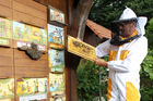 'Urban Beekeeping' in Slovenië