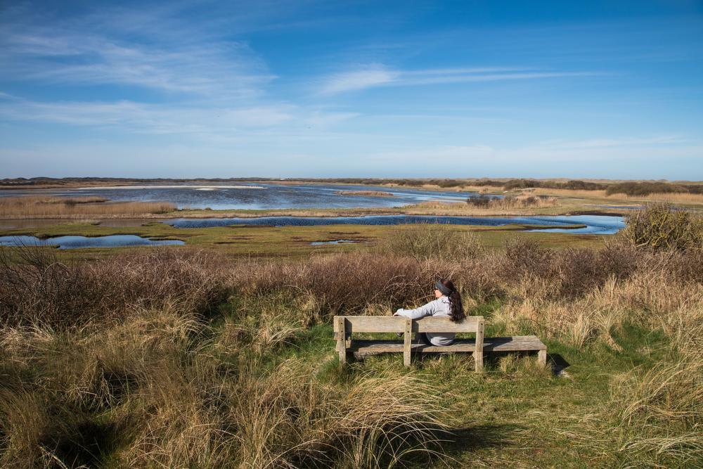 5 unieke plekken op de Nederlandse Wadden