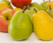 Fruit plukken voor beginners: 7 tips