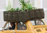 Tuinieren in de stad
