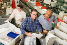 Vlaams-Brabant provincie met hoogste werkzaamheidsgraad bij 50-plussers