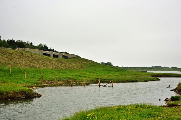 Nieuw Zwin Natuur Park klaar voor grote (her)opening